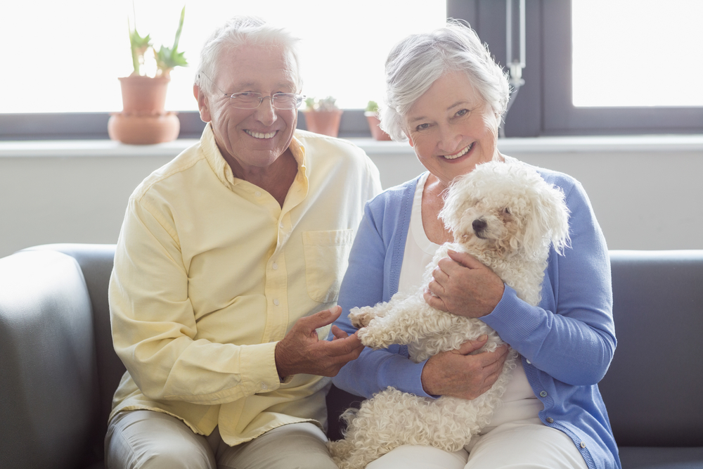 elderly couple with small dog