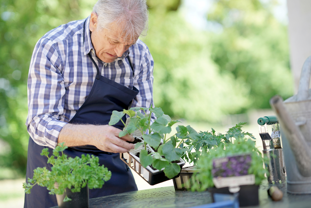 elderly man gardening